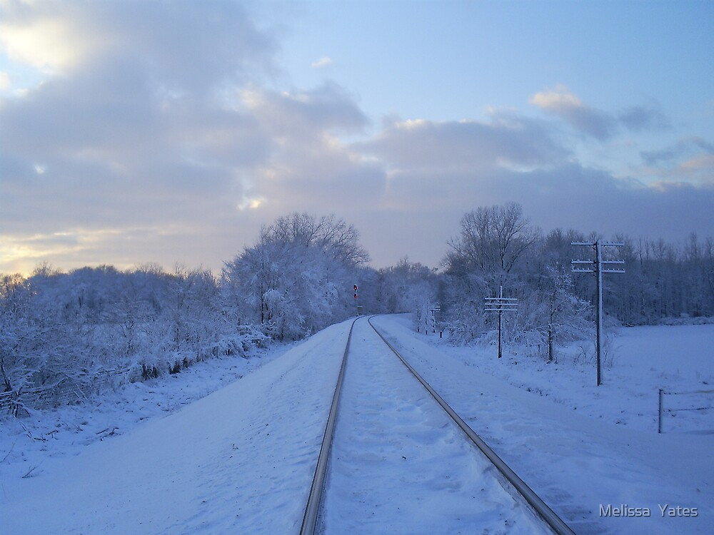 I've been working on the railroad.... by Melissa  Ousley