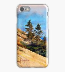 Autumn in Bar Harbor, Maine iPhone Case/Skin
