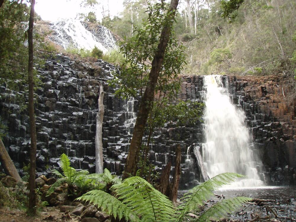 both of the falls at Dip Falls, Mawbanna by gaylene