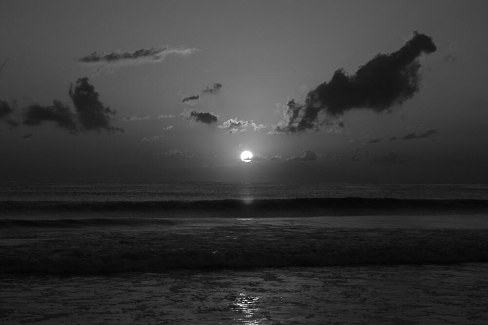 Black and White Sunrise by Jenn  Dixon