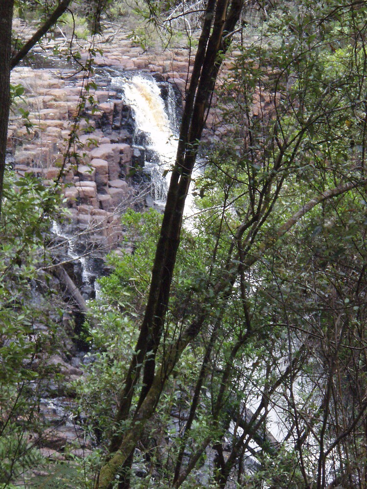 the top of the lower Dip Falls, Mawbanna by gaylene