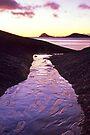 Heavenly Path by Travis Easton