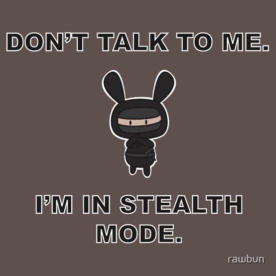 TShirtGifter presents: Don't talk to me for I am Ninja