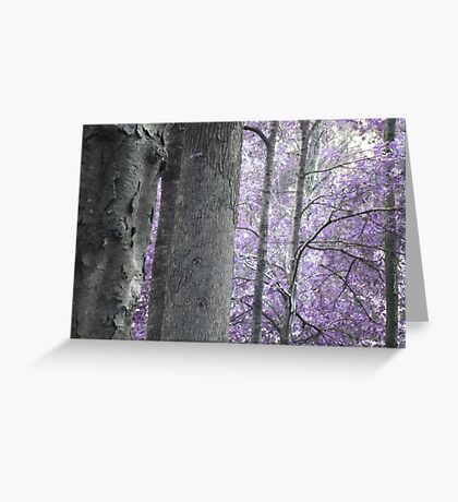 Lavender Forest Greeting Card