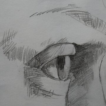 Pencil sketch profile of a face by lizdomett