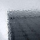 Wet Plate by brilightning
