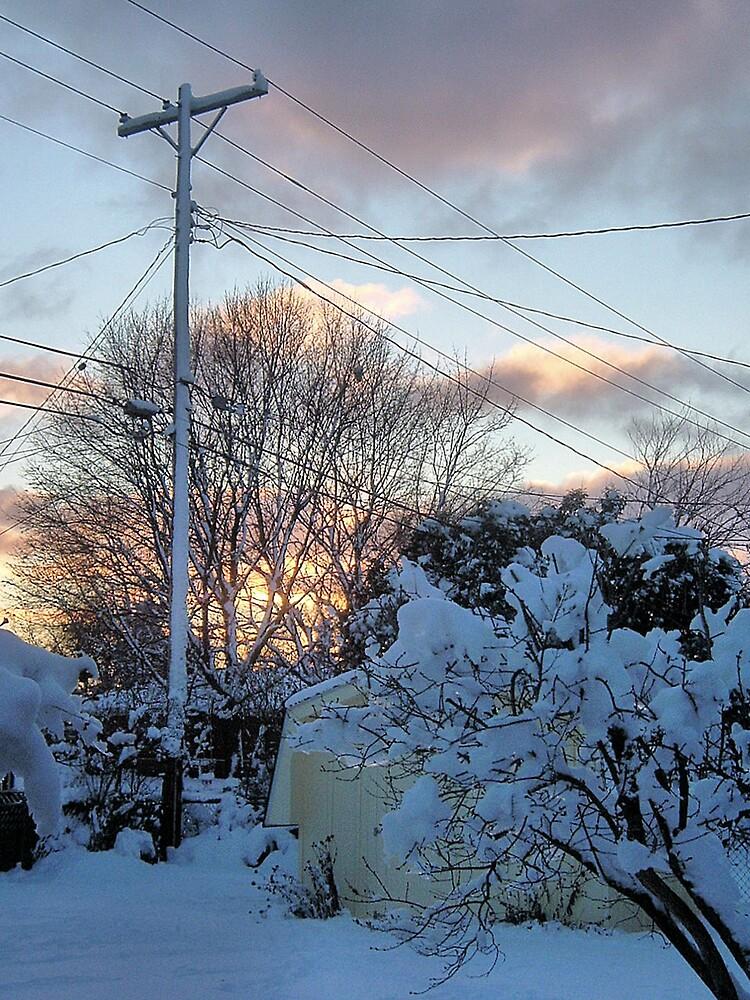 January Sky by Erika Benoit