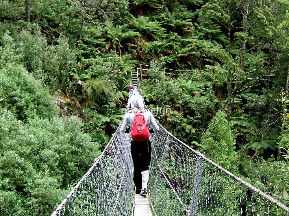 Montesuma Falls, West Coast, Tasmania. by natevelyn