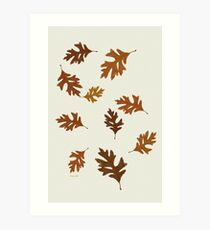 Oak Leaves Pattern Art Print