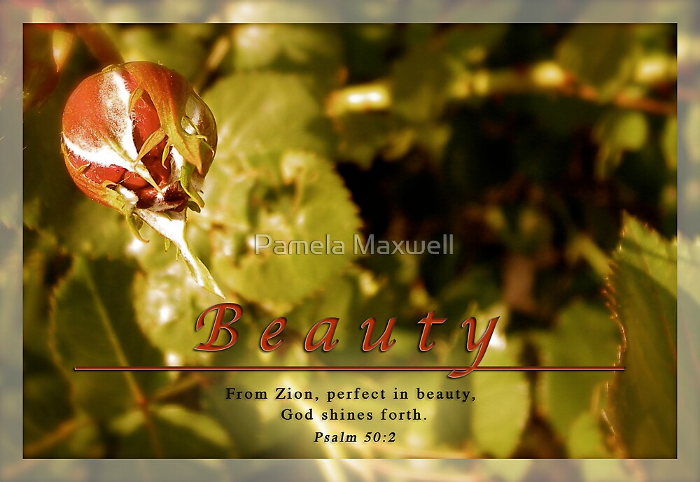Perfect Beauty by Pamela Maxwell