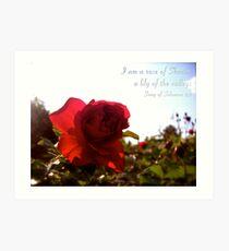 Rose of Sharon Art Print