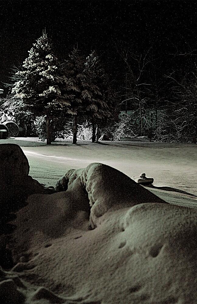 SNOWMAN by martin venit