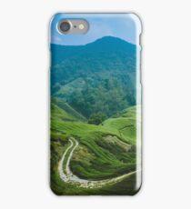 Tea Plantation, Malaysia. iPhone Case/Skin