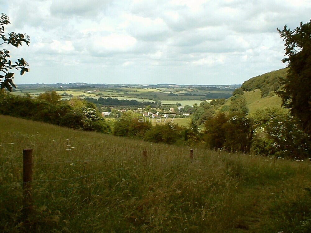 cambridgeshire landscape by anfa77