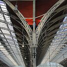 The Angel Wings at Paddington by Larry Lingard-Davis