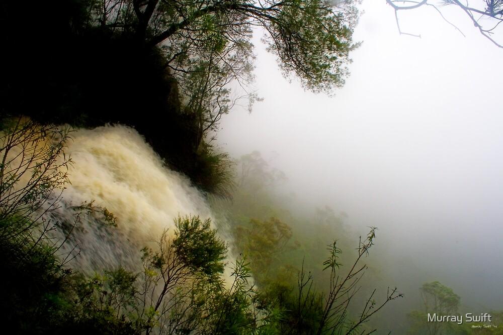 Purlingbrook Falls by Murray Swift