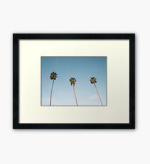 Three Palm Trees Blue Sky California Framed Print