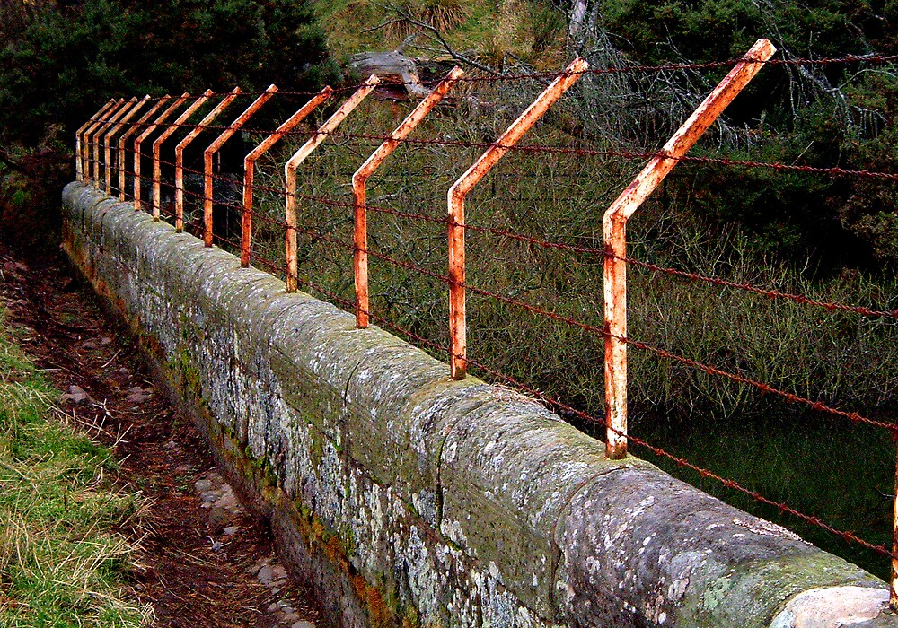 Fence by Puffling