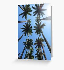 Palm Trees in California Greeting Card