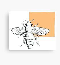 bee- orange Canvas Print