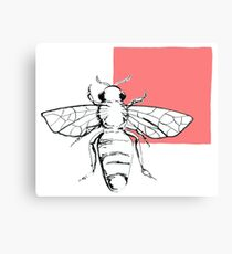 bee- pink Canvas Print