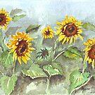 Sonnenschein im regen von Maree Clarkson