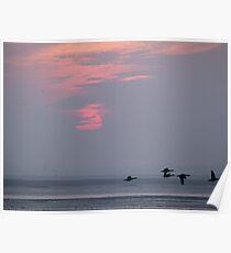 Sunset 1 21-12-07 Poster