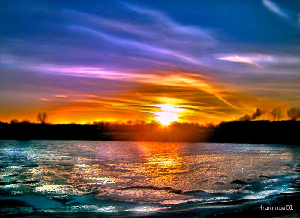 True Colors Shining Through.... by hammye01