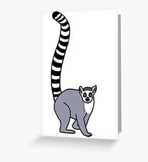 Lemur Catta - Ring Tailed Lemur Greeting Card