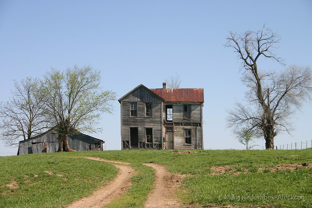 Missouri Country Ruins by Mary Kaderabek-Aleckson