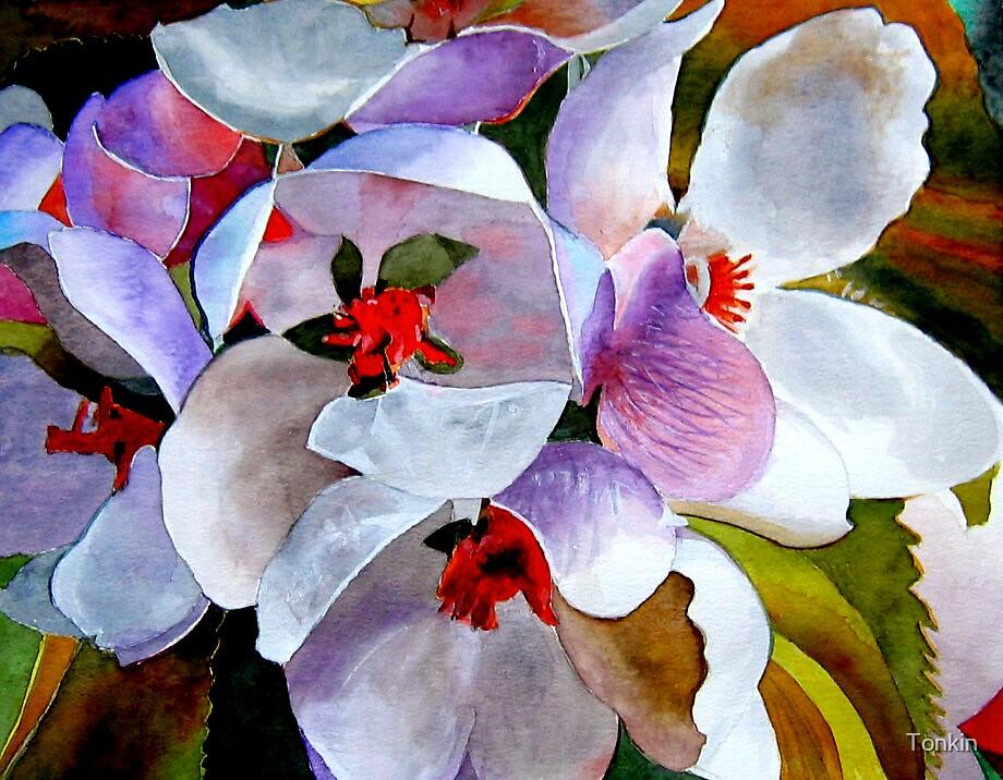Apple Blossom 3 by Tonkin