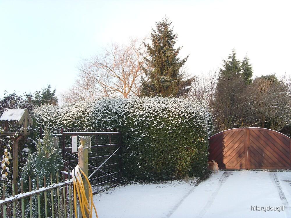 First snow by hilarydougill