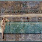 The Volks Limowagon by Richard  Gerhard