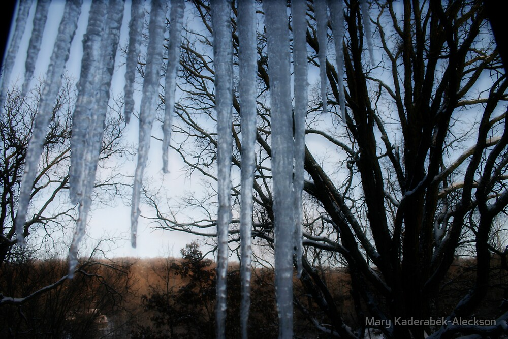Ice Cold by Mary Kaderabek-Aleckson