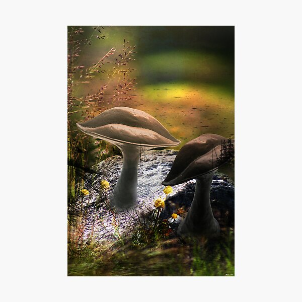 In Dream (from my exhibition) Photographic Print