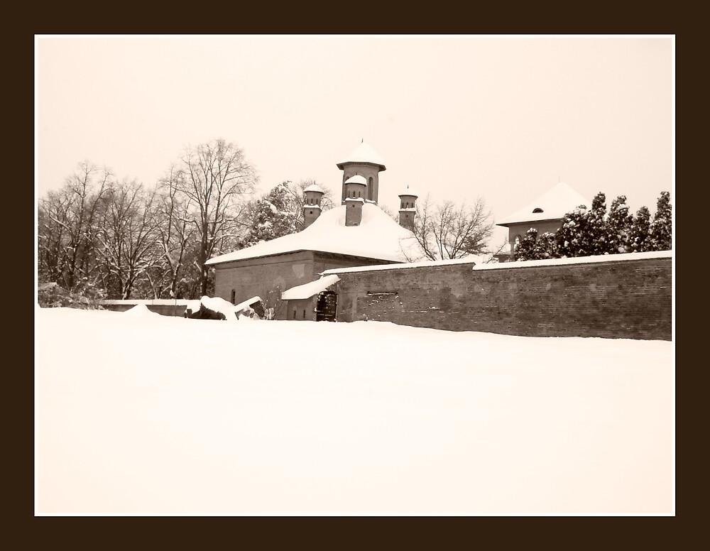 Monastery by Dan Cretu