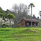 Haus auf dem Hügel von Graeme  Hyde