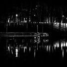 Fishing Dock At Night 2017  by Thomas Young