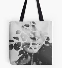 august song Tote Bag