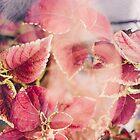 beneath the leaf by Jessica Sharmin