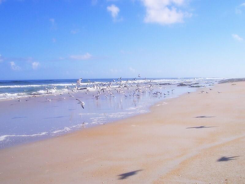 Beach by garain