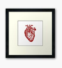 Vintage Heart Anatomy Framed Print