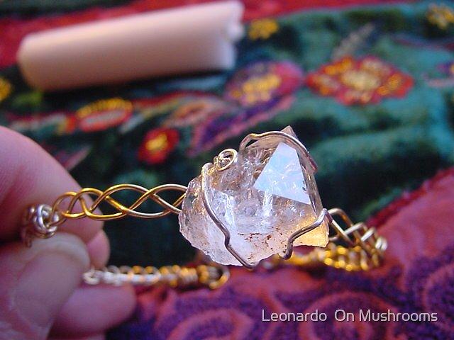 My Jewelry Works by Leonardo  On Mushrooms