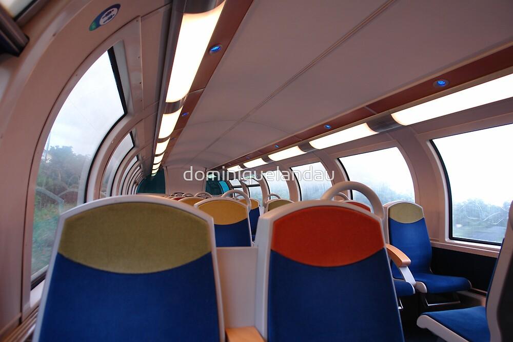 on the train by dominiquelandau