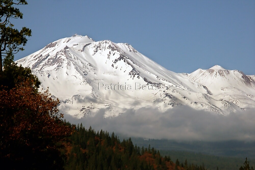 Mt. Shasta by Patricia Betts