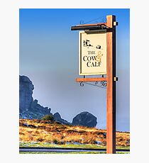 The Cow And Calf - Ilkley Photographic Print
