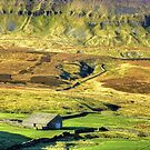 Pen-y-ghent North Yorkshire - 1 by Colin  Williams Photography