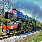 The Flying Scotsman on the  KWVR - 1 by Colin  Williams Photography