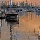 Sunset on Chichester marina by GlennRoger