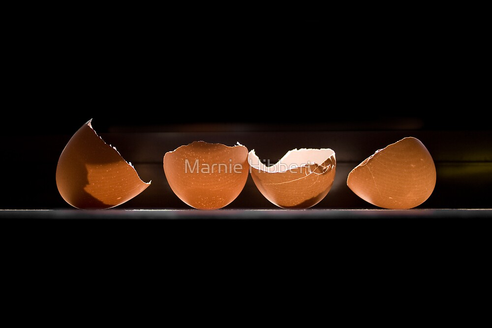 Egg Line Up by Marnie Hibbert